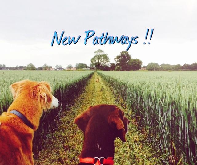 new pathways Rachael Rate Fitness